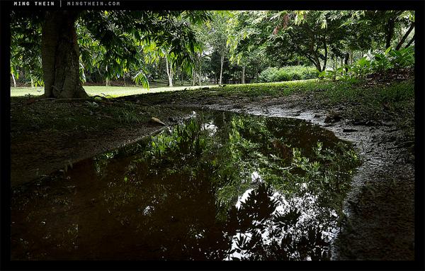 オリンパス M.ZUIKO DIGITAL ED 12-40mm F2.8 PRO で撮影したサンプル画像